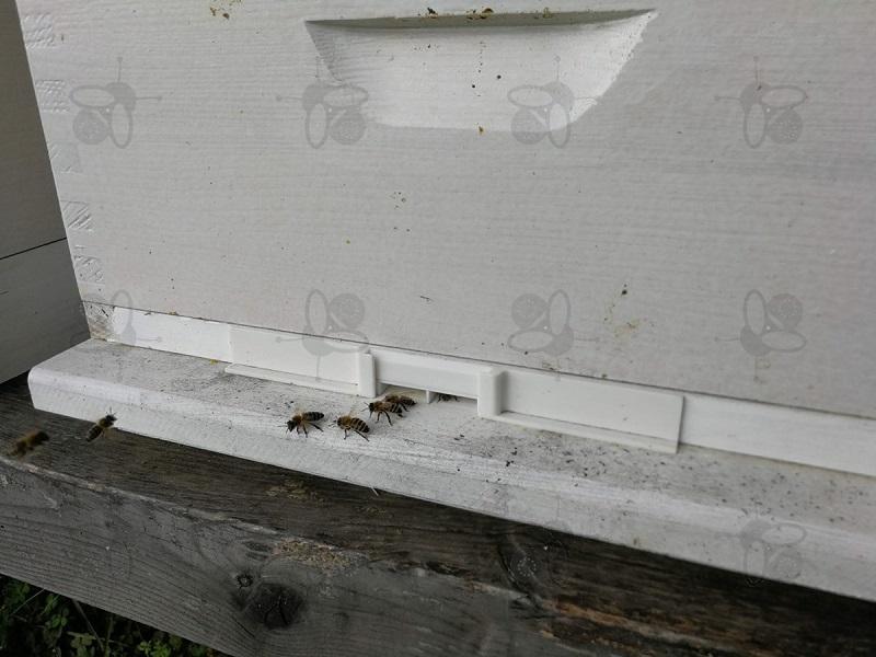Čebelji koridor se ponaša s številnimi prednostmi